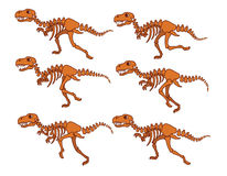 T Rex bone Running Sequence Royalty Free Stock Photography
