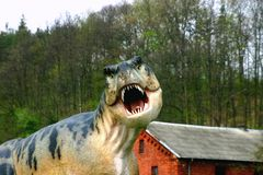 T-rex che cerca un certo alimento Immagini Stock