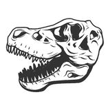 T-rex dinosaur skull isolated on white background. Images for lo Stock Photo