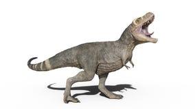 T-Rex Dinosaurus, het reptiel gebrul van Tyrannosaurusrex, voorhistorisch Juradiedier op witte achtergrond, het 3D teruggeven wor stock illustratie