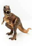 T Rex. Figurine on white background stock photo