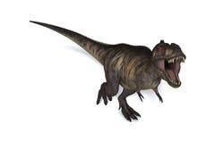 T-Rex Odizolowywał Zdjęcie Stock