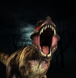 T Rex Roar. A Tyrannosaurus  Rex that is roaring fiercely Stock Image