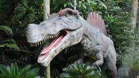 T-Rex, Singapore stock video footage