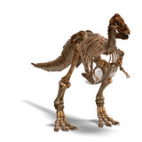 T-Rex Skeleton. Rendering of a t-rex skeleton with Clipping Path and shaow over white vector illustration