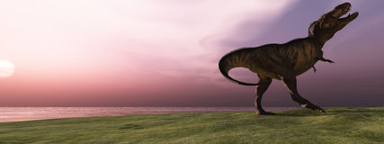 T-Rex at Sunrise Stock Photos