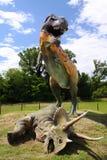 T. Rex Stock Image