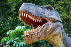 T-Rex or Tyrannosaurus Dinosaur. Angry T-Rex or Tyrannosaurus dinosaur, the hunter Royalty Free Stock Images