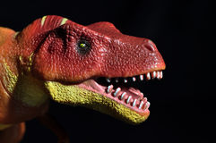 T-Rex 6. Tyrannosaurus Rex Dinosaur toy figure head against black background royalty free stock photo