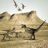 T-rex versus raptors. Fighting in the desert Royalty Free Stock Photo