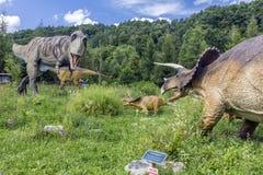 T-REx vs. Triceratops Family. Baltow, Poland - June 12, 2014: Realistic model of Tyrannosaurus rex vs. Triceratops family in Jura Park, Baltow on June 12, 2014 Royalty Free Stock Images