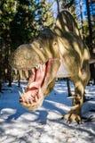 T-Rex w dinosaura parku Obraz Royalty Free