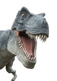 T-Rex on white. Angry T-Rex dinosaur on white royalty free stock photos