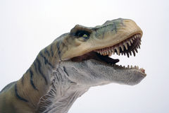 T-rex3. T-rex toy Stock Image