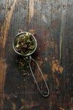 tè selettivo naturopathy di infusione di erbe di vetro del horsetail del fuoco del equisetum della tazza del arvense Fotografie Stock