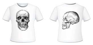 T-shirt Stock Images