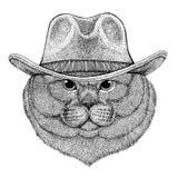 T-shirt animal vestindo masculino do vaqueiro animal ocidental selvagem do chapéu de vaqueiro do animal selvagem do gato nobre de Imagens de Stock Royalty Free