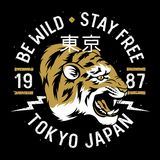T-shirt 012 de tigre Images libres de droits