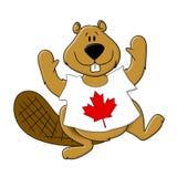 T-shirt desgastando do castor do dia de Canadá Fotografia de Stock
