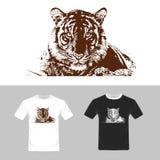 T-shirt graphic design. Tiger vector . Stock Photos