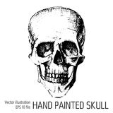 T-shirt Graphics - sketched skull Royalty Free Stock Images
