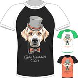 T-shirt with Labrador Retriever gentleman dog Royalty Free Stock Photo