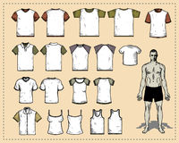 T-Shirts. Vector Illustration -  Back and front Royalty Free Stock Photography