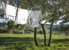 T-shirts et tout autre séchage de blanchisserie sur une corde à linge images stock