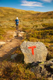 T sign on rock and hiker with backpack traveling in Norway mount Stock Photography