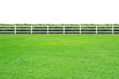 Tęsk ogrodzenie na bielu Obrazy Stock