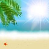 Été Sunny Natural Background Vector Images stock