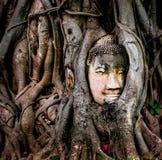 T?te de Bouddha photographie stock libre de droits