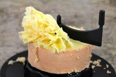 Tête de Moine cheese Stock Image