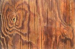 tła tekstury drewno Fotografia Royalty Free