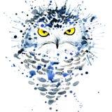 T-tröjadiagram/gullig snöig uggla, illustrationvattenfärg stock illustrationer