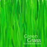 tła trawy zieleni wektor Obrazy Royalty Free