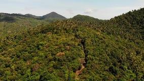 For?t tropicale sur l'?le Vue fantastique de bourdon de jungle verte sur l'ar?te de montagne de stup?fier l'?le tropicale exotiqu banque de vidéos