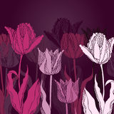 tła tulipanów wektor Obraz Stock