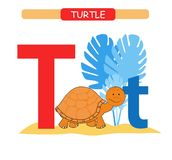 Letter T and funny cartoon turtle. Animals alphabet a-z. Cute zoo alphabet in vector for kids learning English vocabulary. Printab. Letter T and funny cartoon stock illustration