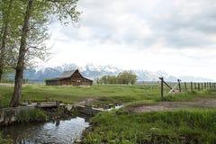T un granaio di Moulton nel grande parco nazionale di Tetons Immagini Stock