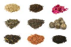 Tè verde, nero, floreale e di erbe Fotografia Stock