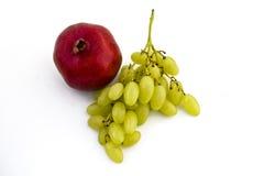tła winogron granatowa biel Obraz Stock