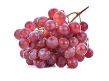 tła winogron odosobniony czerwony biel Fotografia Stock
