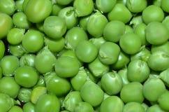 tła zieleni odosobniony grochowy biel Obraz Royalty Free