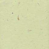 tła zielonego papieru miejsca tekst twój Obraz Royalty Free