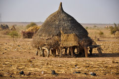 stock image of  african village house in niger