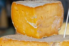 stock image of  aged cheddar cheese