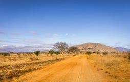 stock image of  safari road in kenya