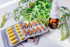 stock image of  ambrosia artemisiifolia allergy. pills and nasal spray to cure ragweed allergy. healthcare and medicine
