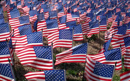 stock image of  american flags